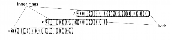 Figure 1.   Schematic example of tree-ring matching.